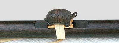 turtle2cl.jpg (13756 bytes)
